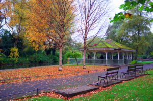 St Stephen's Green In Autumn, near Us & Co's Dublin co-working space