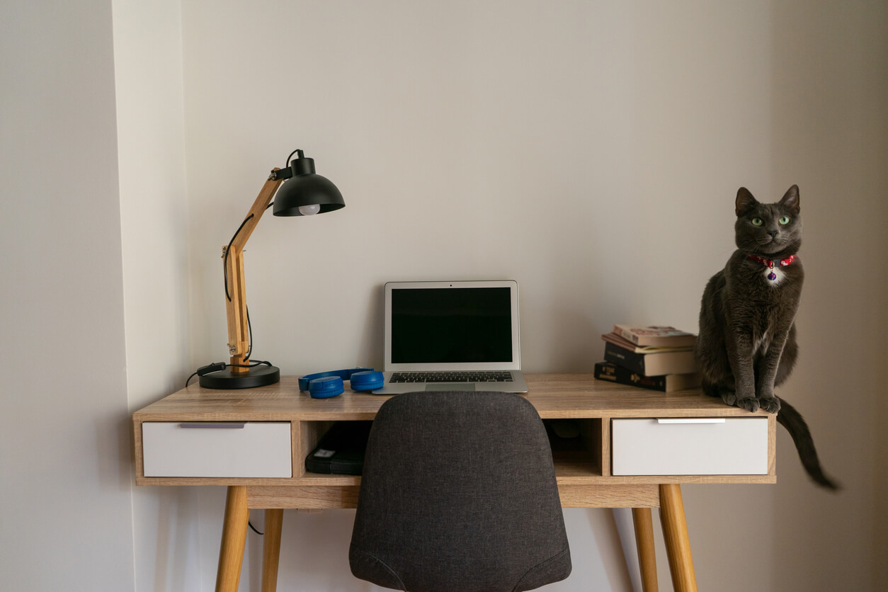 working from home can lead to distractions, is coworking better?